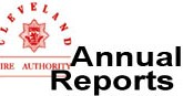 Annual Report Button 2