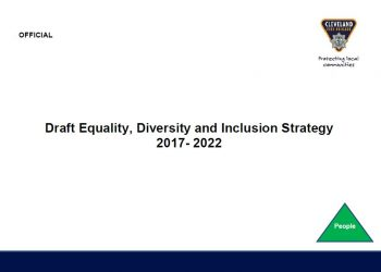 Draft Equality, Diversity and Inclusion Strategy