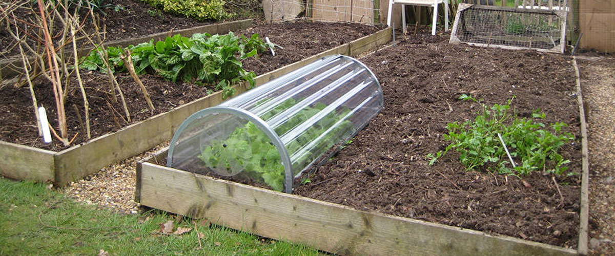 Gardening and Allotment Safety